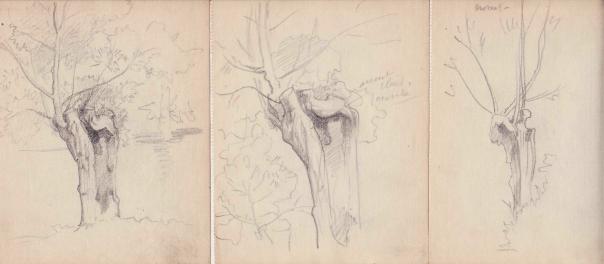 e-rosset-granger-carnet-de-croquis-1917-trois-planches-representant-un-tronc-darbre-a-crosnes-crayon-noir-132-x-125-x-3