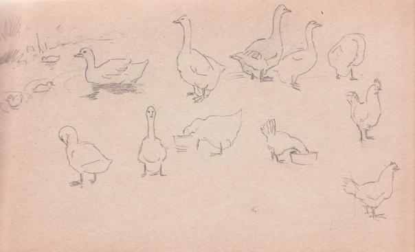e-rosset-granger-carnet-de-croquis-1919-132-x-220-etude-doies-et-de-poules-crayon-noir
