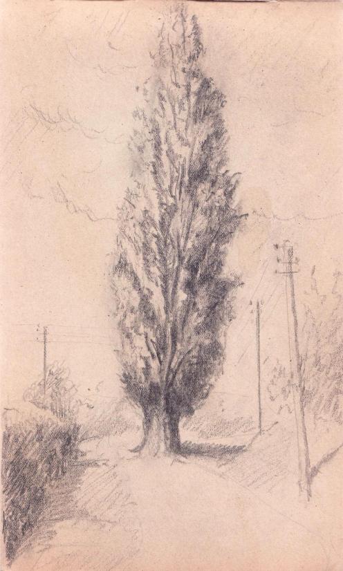 e-rosset-granger-carnet-de-croquis-1919-220-x-132-peuplier-et-poteau-electrique-crayon-noir