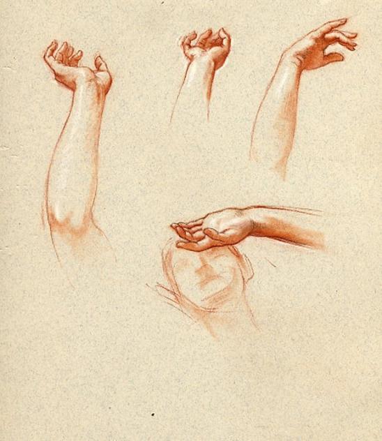 e-rosset-granger-etude-de-mains-craies-sanguine-et-noire-en-vue-dune-composition-297-x-230