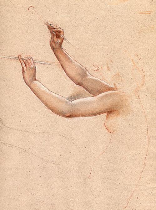 e-rosset-granger-etude-de-mains-et-de-bras-pour-les-hierodules-au-mont-eryx-craies-sanguine-et-noire-305-x-230