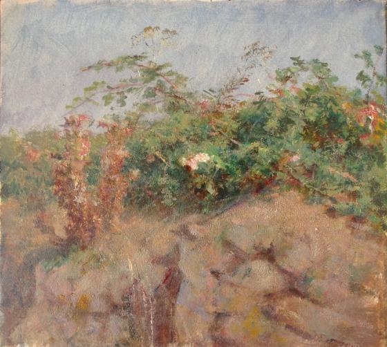 e-rosset-granger-huile-sur-papier-1926-27-272-x-300-etude-de-ronces-a-belle-isle-en-mer