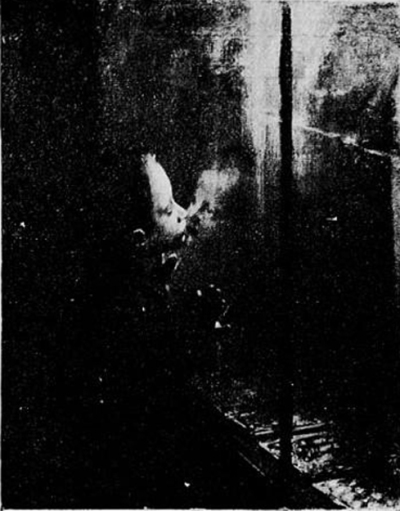 e-rosset-granger-huile-sur-toile-1904-convoitise-snba-1904-n-1092-musee-de-philadelphie