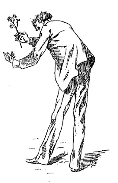 e-rosset-granger-illustration-09-1886-le-docteur-modesto-16-page-293-le-docteur-modesto-pla-y-saballos-tend-une-tige-de-primeveres-a-madame-alice-septembre-1886