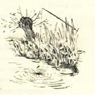 e-rosset-granger-illustration-10-1886-le-docteur-modesto-8-laraignee-page-77-revue-les-lettres-et-les-arts-oct-1886